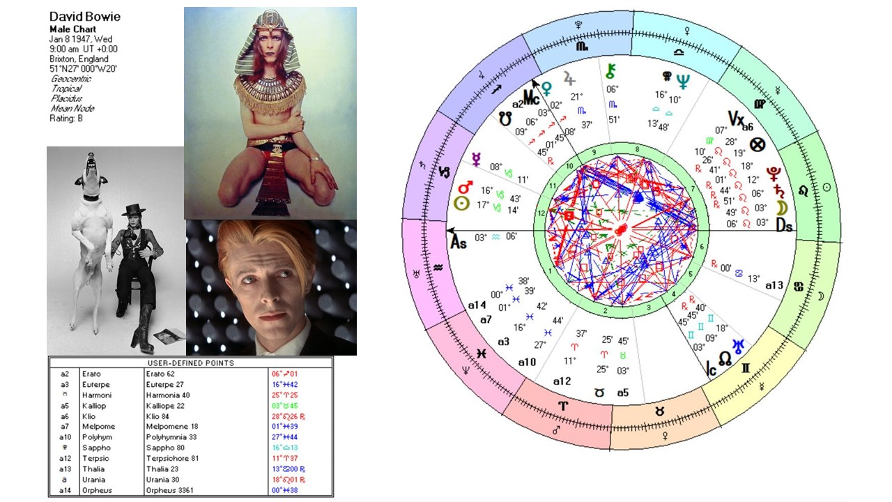 Bowie Muse Chart