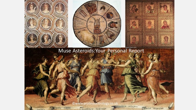Muse Asteroid Report